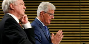 Barnier Davis