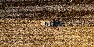 Illustration agriculture, tracteur, champ