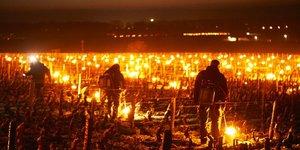 Les vignerons tentent désespérément de sauver leur récolte du gel en allumant des bougies