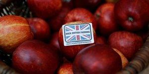 Pommes britanniques