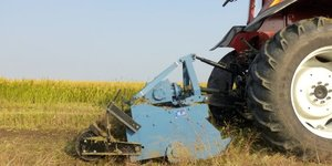Services et agriculture ont freine le pib chinois au 4e trimestre
